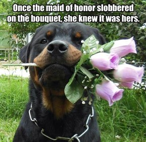 And we're skipping the bouquet toss.