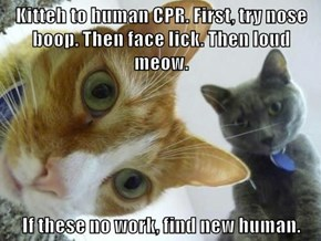 Kitteh to human CPR. First, try nose boop. Then face lick. Then loud meow.  If these no work, find new human.
