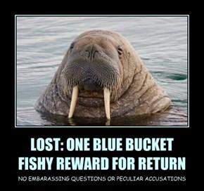 LOST: ONE BLUE BUCKET FISHY REWARD FOR RETURN