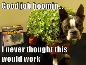 Good job hoomin...  I never thought this would work