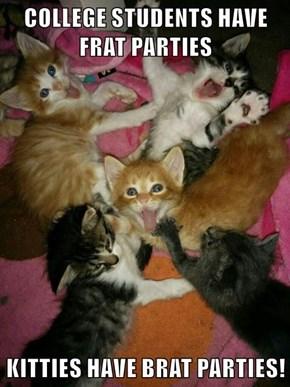 COLLEGE STUDENTS HAVE FRAT PARTIES  KITTIES HAVE BRAT PARTIES!