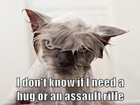 I don't know if I need a                  hug or an assault rifle