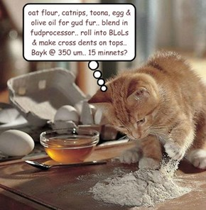 Homemade Recipe: Tuna Catnip Kitty Treats