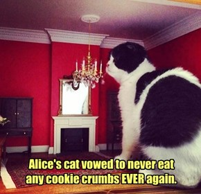 Alice's cat vowed to never eat any cookie crumbs EVER again.