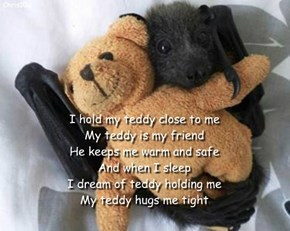 I hold my teddy close to me My teddy is my friend He keeps me warm and safe And when I sleep  I dream of teddy holding me My teddy hugs me tight