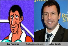 Don Flamenco Totally Looks Like Adam Sandler