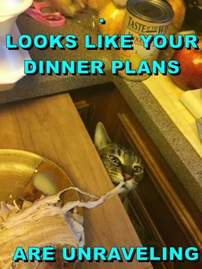 .                                  LOOKS LIKE YOUR DINNER PLANS  ARE UNRAVELING