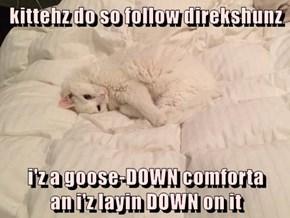 kittehz do so follow direkshunz  i'z a goose-DOWN comforta                                  an i'z layin DOWN on it