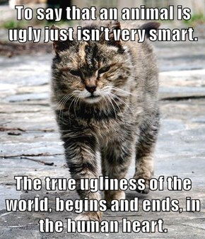 To say that an animal is ugly just isn't very smart.  The true ugliness of the world, begins and ends, in the human heart.