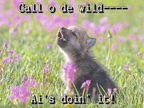Call o de wild----  Ai's doin' it!