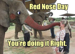 Red Nose Day - You're Doing It Right.