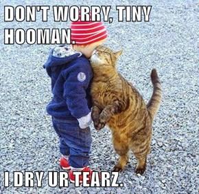 DON'T WORRY, TINY HOOMAN.  I DRY UR TEARZ.