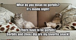 What do you mean no gerbils? It's movie night!     There have to be gerbils! Gerbils and cheez dip are my favorite snack!