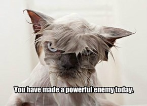 You have made a powerful enemy today.