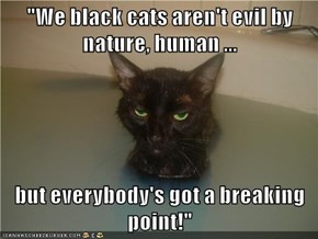 """""""We black cats aren't evil by nature, human ...  but everybody's got a breaking point!"""""""