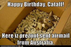 Happy Birthday, Cataff!  Here iz prezunt sent airmail frum Australia.