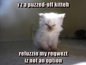 i'z a puzzed-off kitteh  refuzzin my reqwezt                                              iz not an option