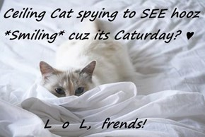 Ceiling Cat spying to SEE hooz *Smiling* cuz its Caturday? ♥          L  o  L,  frends!