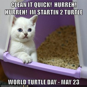 CLEAN IT QUICK!  HURREH!  HURREH!  IM STARTIN 2 TURTLE  WORLD TURTLE DAY - MAY 23