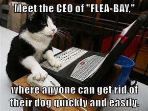 "Meet the CEO of ""FLEA-BAY,""  where anyone can get rid of their dog quickly and easily."