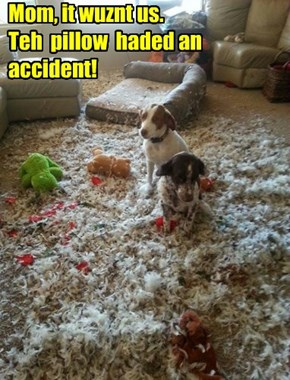 Mom, it wuznt us.  Teh  pillow  haded an accident!