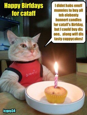 Happy Birfday for teh wunnerful cataff! I hopes yu habs lots ob creamy Cake an' prezzies an' tasty noms!