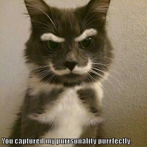 You captured my purrsunality purrfectly.