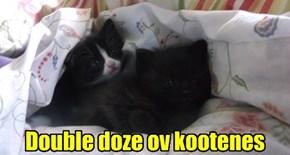 Double doze ov kootenes