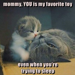 mommy, YOU is my favorite toy  even when you're                                                trying to sleep