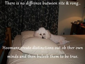 There is no diffrence butween rite & rong..  Hoomans create distinctions out ob ther own minds and then buleeb them to be true.