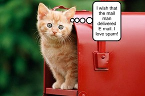 I wish that the mail man delivered E mail. I love spam!
