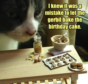 I knew it was a mistake to let the gerbil bake the birthday cake.