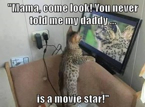 """""""Mama, come look! You never told me my daddy ...  is a movie star!"""""""