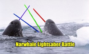 The Epic Battles In The Defrosted Waters Of Hoth