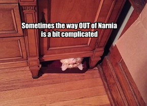 Sometimes the way OUT of Narnia is a bit complicated