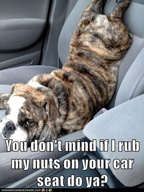 You don't mind if I rub my nuts on your car seat do ya?