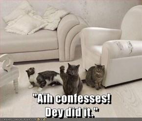 """Aih confesses!                                            Dey did it."""