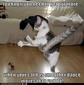 You know you need to get out more ...  when your cat has smoother dance moves than you do!
