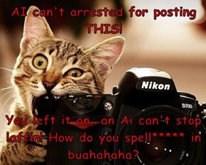 AI can't arrested for posting THIS!   You left it on, an Ai can't stop laffin! How do you spell***** in buahahaha?