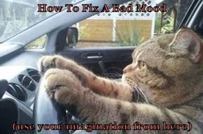How To Fix A Bad Mood  (use your imagination from here)