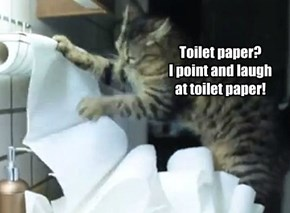 Toilet paper is for kittens.