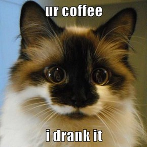 ur coffee  i drank it