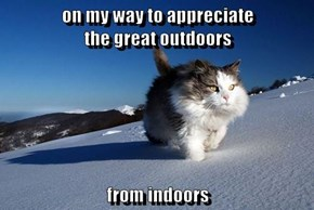 on my way to appreciate                              the great outdoors  from indoors