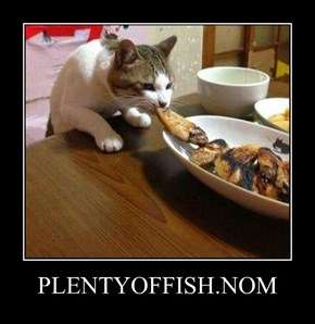 PLENTYOFFISH.NOM