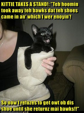 """KITTIE TAKES A STAND!: """"Teh hoomin took away teh bawks dat teh shoes came in an' which I wer enoyin'!  So now I refuzes to get owt ob dis shoe until she returnz mai bawks!!"""""""