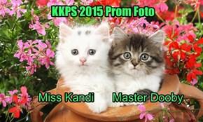 KKPS Prom Foto
