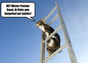 HEY Mister Painter Dood, Ai finks you furgetted yer ladder!