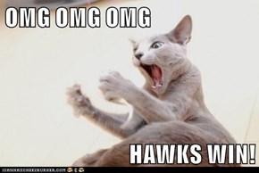 OMG OMG OMG  HAWKS WIN!