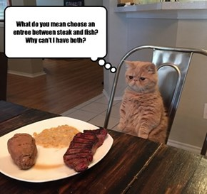Smart kitty! The next time I go out to eat, I'm going to ask my waitress that VERY question!