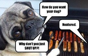 This is the LAST time I help you barbecue!